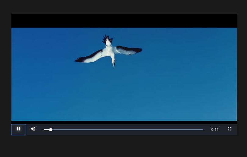 手机移动端视频播放器插件Video.js